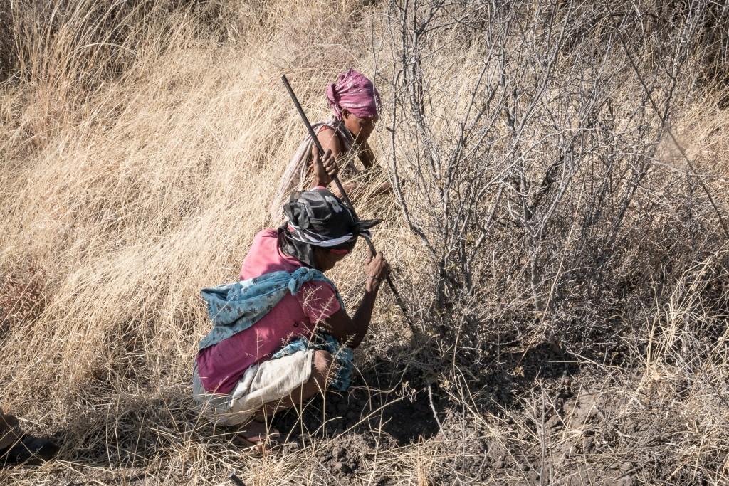 Namibia - Femei bosimane 1