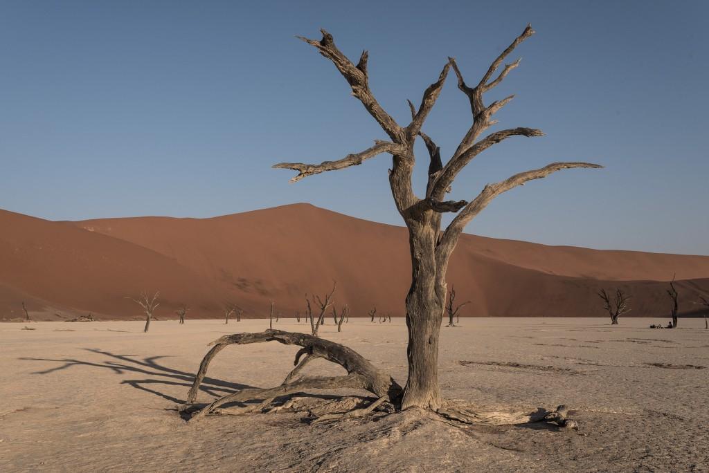 desertul namibian