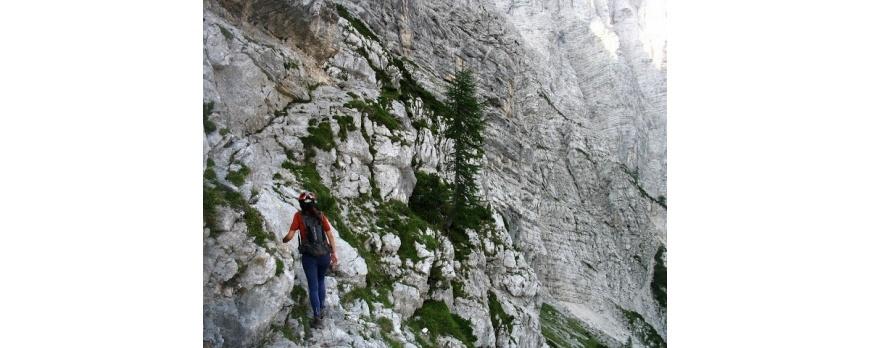 Merinito pe Triglav